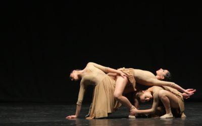 Concorso Internazionale DanzaSì 2017